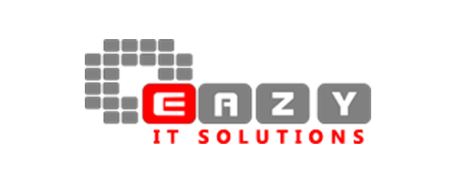 EAZY IT SOLUTIONS SEO